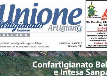 L'Unione Artigiana on line